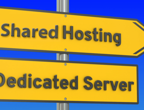 Shared Hosting vs Dedicated Hosting –  Which Fits Your Business?