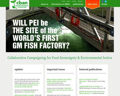 CBAN Website Development