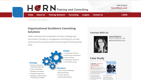 Horn Training & Consulting - website design - website development