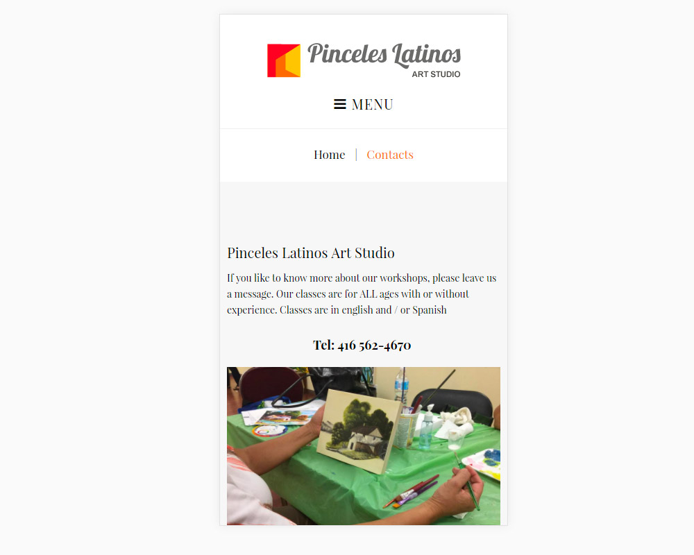 Pinceles Latinos - website design - website development